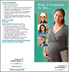 Work and pregnancy do mix - Brochure