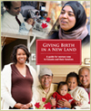 Giving birth in a new land - book